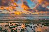 Fuji Beach Kauai