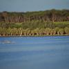 Kent's Lagoon in Tilt Shift style on the Hundred Line