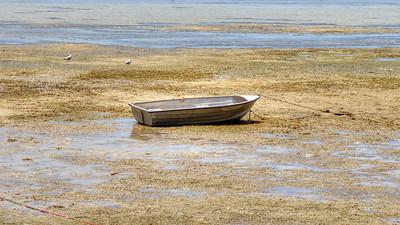 Low Tide2 (1)