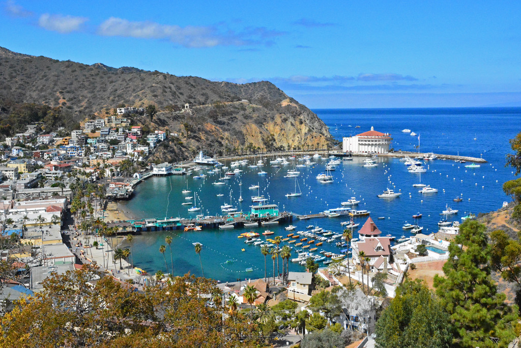 Island Travel - Catalina Island, California