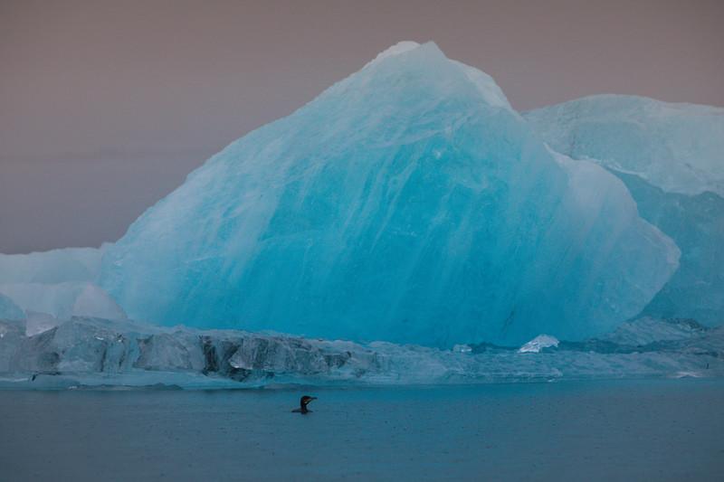 Jökulsárlón ice lagoon, Vatnajökull National Park