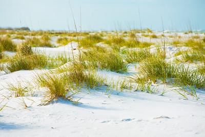 AMI Dunes