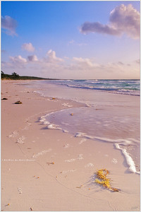 """""""Pink Sands"""" A quiet morning along the fine pink sands of North Beach on Harbour Island signal the beginning of another beautiful day in Paradise."""