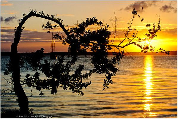 """Crescent Sun"""