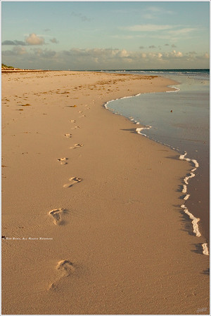 """Leave Only Footprints"" That we may all strive to achieve this one simple goal. Unfortunately, even the most remote beaches continue to gather much more damaging evidence of Man's careless passage."