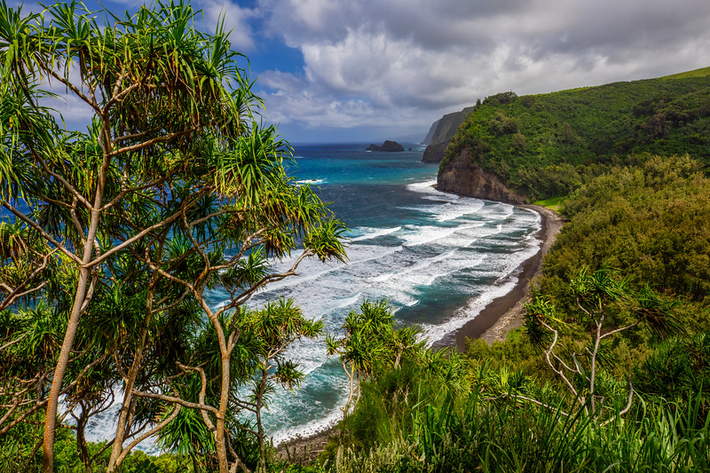 Pololu View  ©2019  Janelle Orth