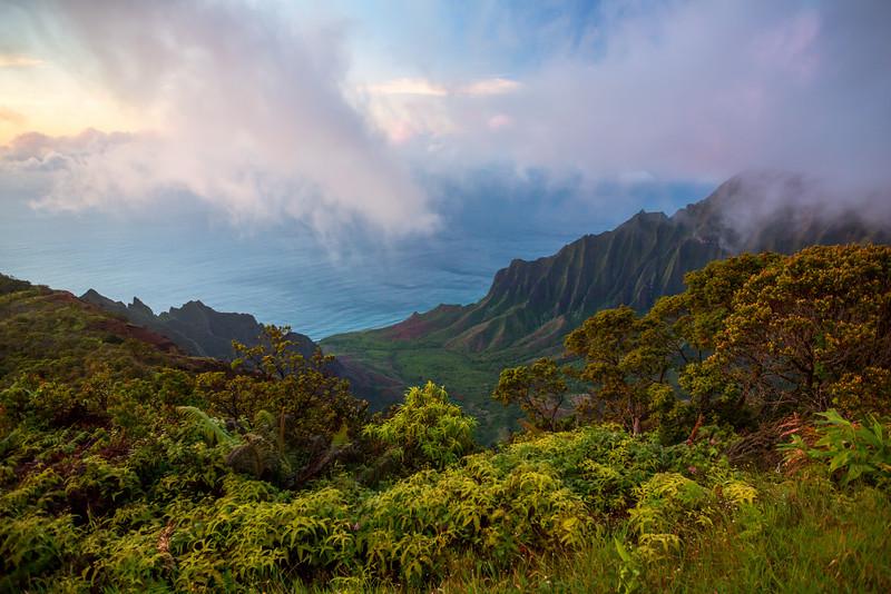 Na'Pali Vista  ©2016  Janelle Orth