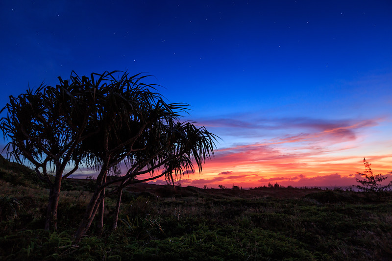 Facpi Sunset  ©2018  Janelle Orth