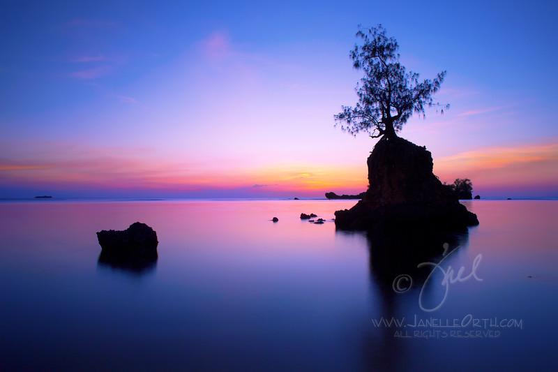 Purple Dusk  ©2015  Janelle Orth