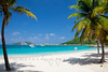 tropical beach with palm trees at Peter Island, BVI