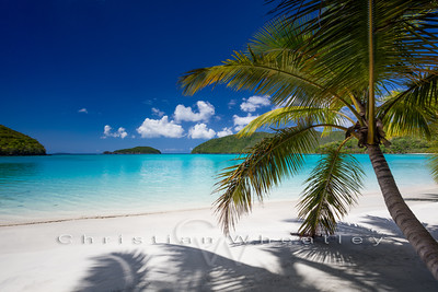 STJ 130 Maho Bay, St. John, US Virgin Islands (W188)