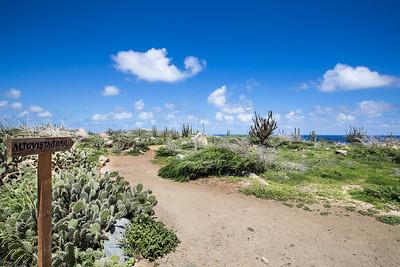 Alto Vista Trail
