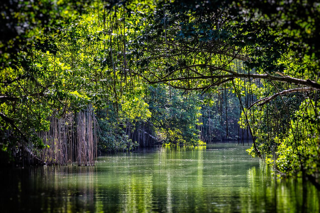 Black River serenity