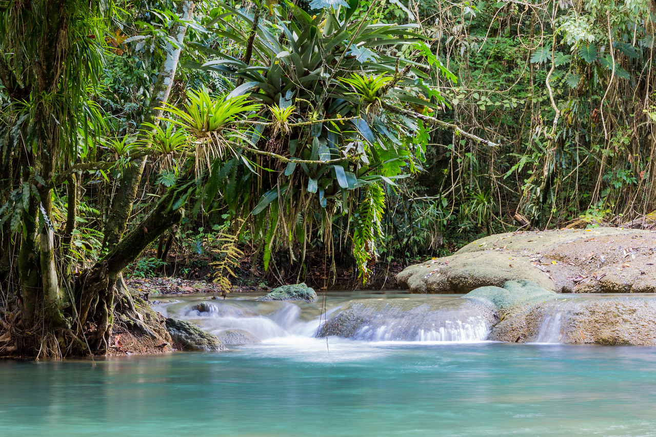 Y S Falls, Jamaica-lower