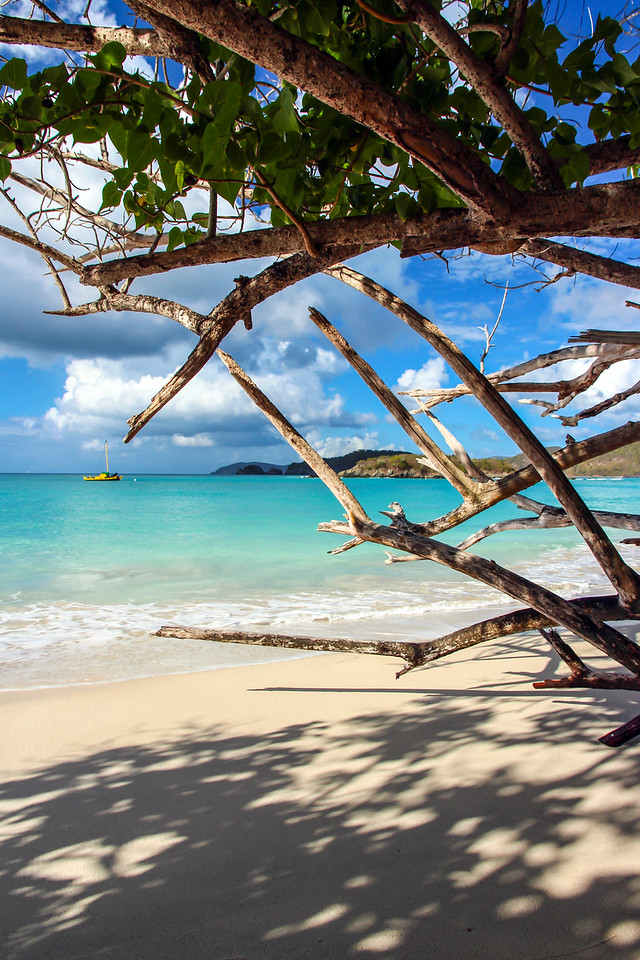 Cinnamon Bay Beach through the trees, St John, USVI