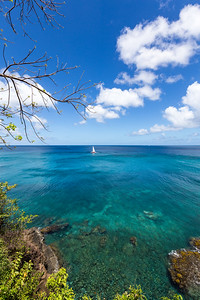 St Lucia Blues Sailboat vertical