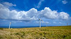 Upolu Point wind turbines near Hawi, Hawaii