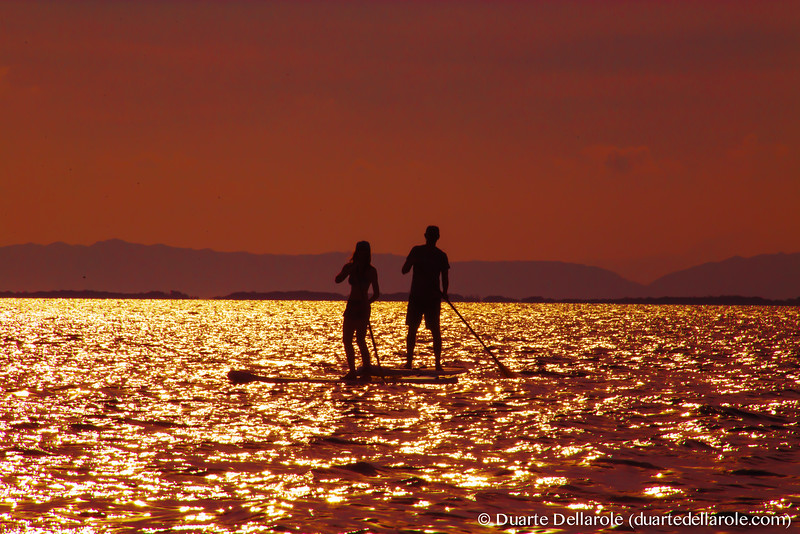 Stand Up Paddleboard at Sunset