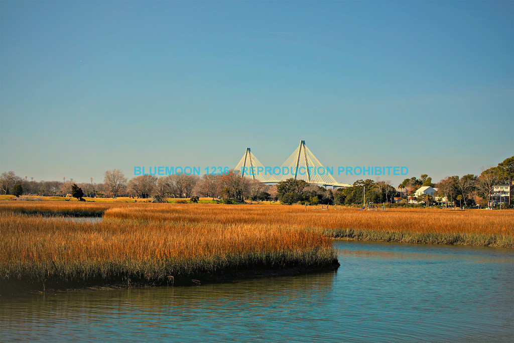Marsh at Shem Creek With Cooper River Bridge In Background