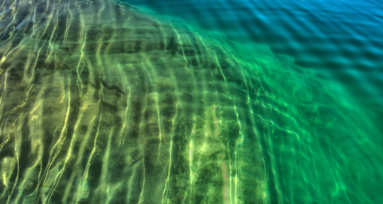 Ripples on the Reef