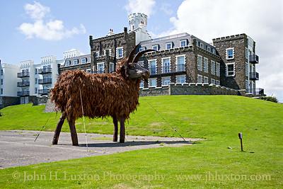 The Loaghtan Sheep, Douglas Head, Douglas, Isle of Man - July 02, 2017