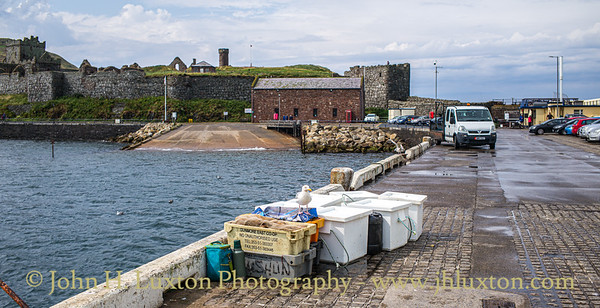 Seagull and Fish Boxes - The Breakwater, Peel, Isle of Man - July 30, 2019
