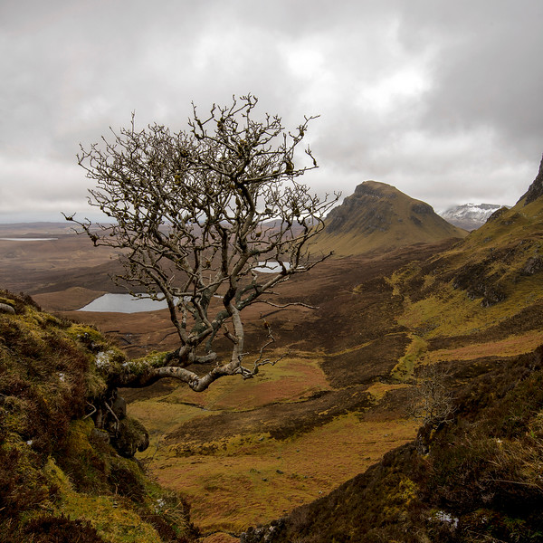 The Quiraing - Isle Of Skye