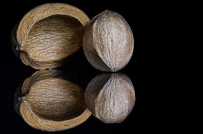 Nutshell and Nut