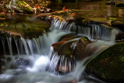 Isolation on Tuni Creek