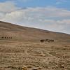 Bedouin Adventure 002