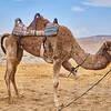 Bedouin Adventure 016