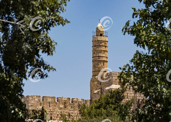 The Tower of David in Jerusalem with Blurred Foliage in the Foreground