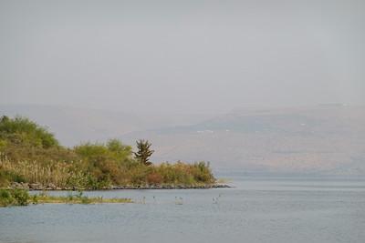 Israel-SonyCamera-037