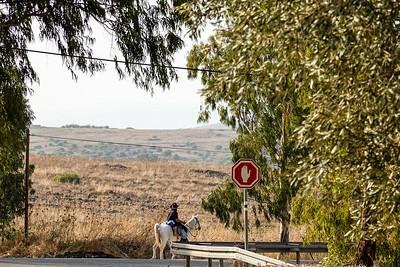 Israel-SonyCamera-044