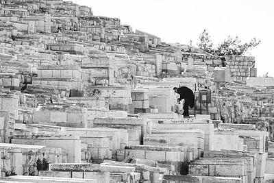 Israel-SonyCamera-197