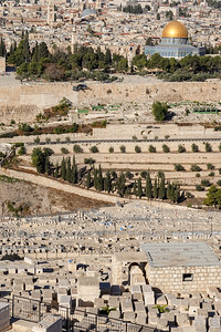 Israel-SonyCamera-188
