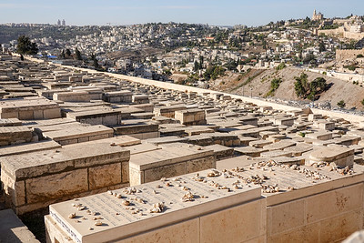 Israel-SonyCamera-193