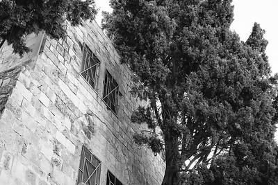 Israel-SonyCamera-212