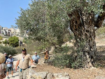 Israel-iPhone11-057