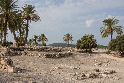 Israel-SonyCamera-025