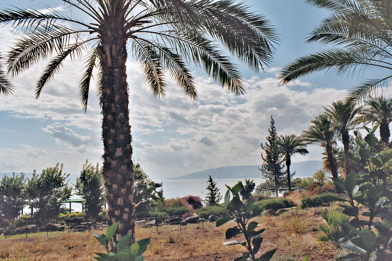 Another view of the garden at the shrine and the Sea of Galilee
