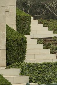 Stairway to Shrubbery