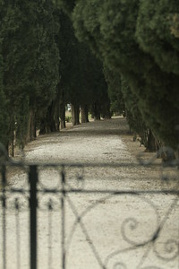 Bahai Gardens in Bustan Ha Galil. The path beyond the gate... That's where the crows are probably waiting
