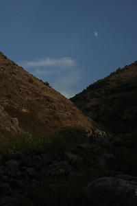moon_002