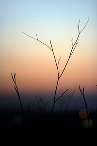 Morning in Har Hadar