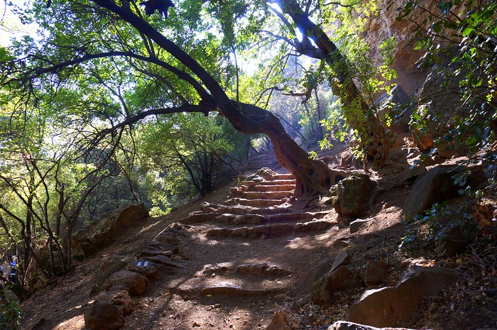 Hiking in the Banias Nature Reserve in Israel.