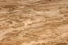 Judean Desert Sand Dunes