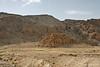 Qumran Hills