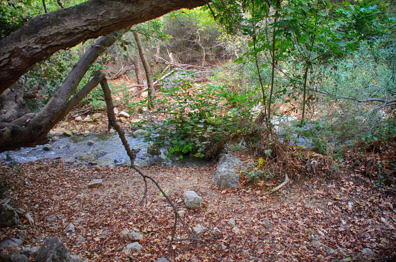 Stream Kziv, Trip to Fortress Montfort, Israel