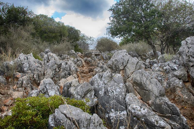Trip to Fortress Montfort, Israel